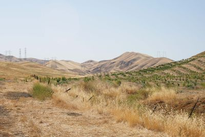 Golden Hills1