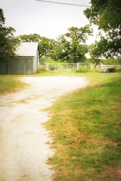 Paradise Ranch Driveway
